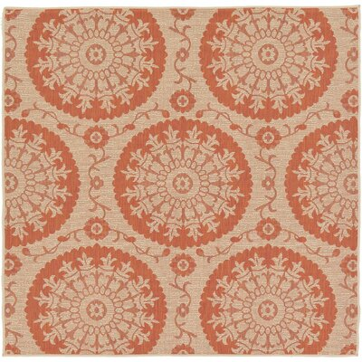 Ephraim Terracotta Outdoor Area Rug Rug Size: Square 6