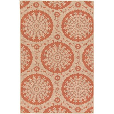 Ephraim Terracotta Outdoor Area Rug Rug Size: 5 x 8