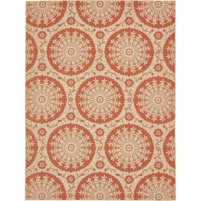 Ephraim Terracotta Outdoor Area Rug Rug Size: 9 x 12