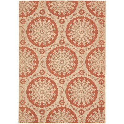 Ephraim Terracotta Outdoor Area Rug Rug Size: 8 x 11