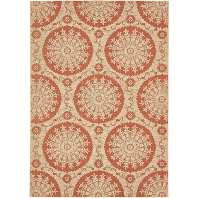 Ephraim Terracotta Outdoor Area Rug Rug Size: 6 x 9