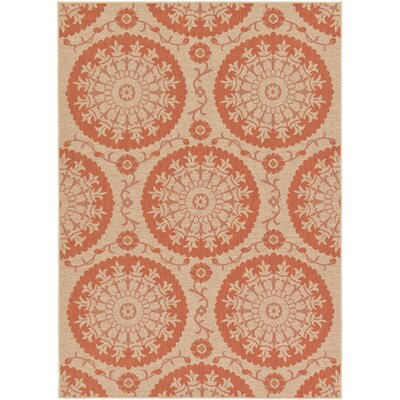 Ephraim Terracotta Outdoor Area Rug Rug Size: 7 x 10