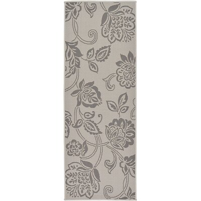 Florence Gray Outdoor Area Rug Rug Size: Runner 22 x 6