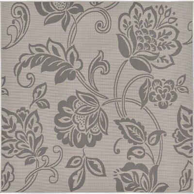 Florence Gray Outdoor Area Rug Rug Size: Square 6