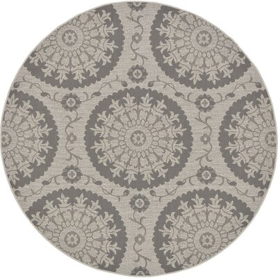 Forbes Gray Outdoor Area Rug Rug Size: 4 x 6
