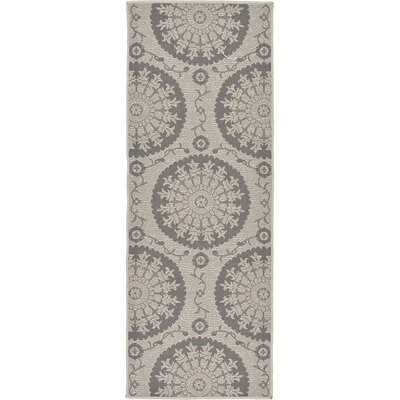 Forbes Gray Outdoor Area Rug Rug Size: Runner 22 x 6