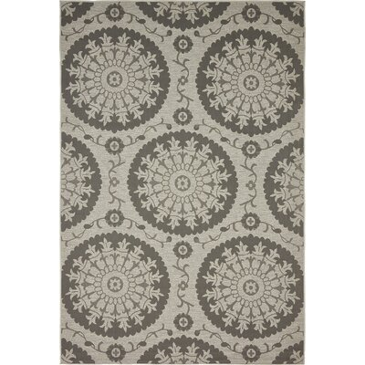 Forbes Gray Outdoor Area Rug Rug Size: 6 x 9