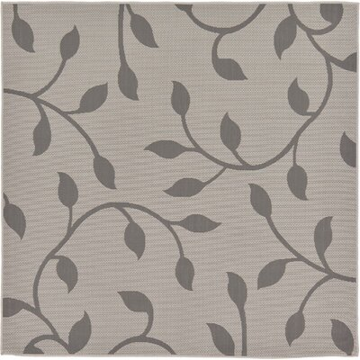 Forrest Gray Outdoor Area Rug Rug Size: Square 6
