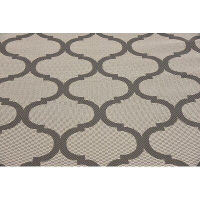 Unionville Gray Outdoor Area Rug Rug Size: Rectangle 33 x 5
