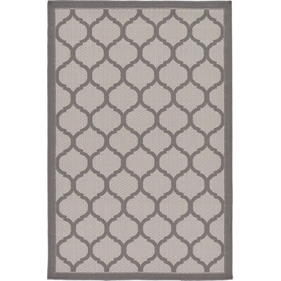 Unionville Gray Outdoor Area Rug Rug Size: 33 x 5