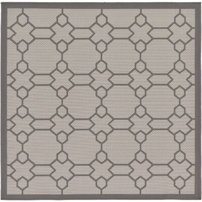 Hubert Gray Outdoor Area Rug Rug Size: Square 6'