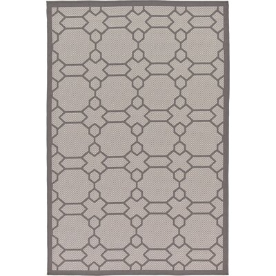 Hubert Gray Outdoor Area Rug Rug Size: 53 x 8