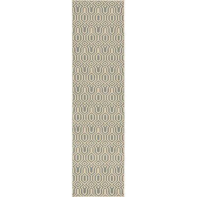 Moore Light Blue Area Rug Rug Size: Runner 27 x 10