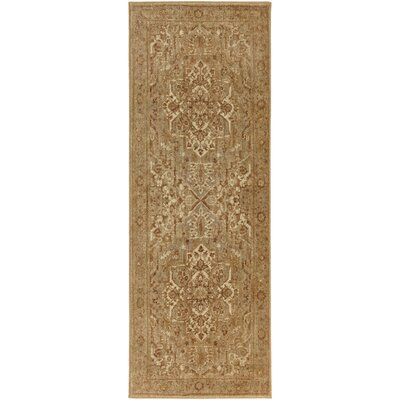Prussia Brown Area Rug Rug Size: Rectangle 53 x 73