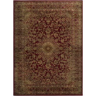 Netta Red/Brown Area Rug Rug Size: Rectangle 8 x 10