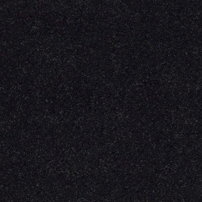 Raphael Black Area Rug Rug Size: Square 7 x 7