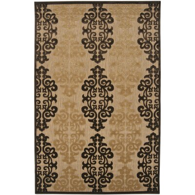 Carver Natural/Beige Outdoor Rug Rug Size: Rectangle 5' x 7'6