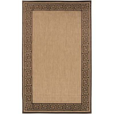Carver Natural/Chocolate Outdoor Rug Rug Size: Rectangle 39 x 58