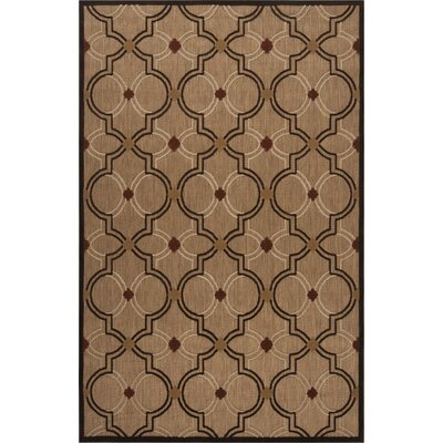 Carver Outdoor Rug Rug Size: Rectangle 5 x 76