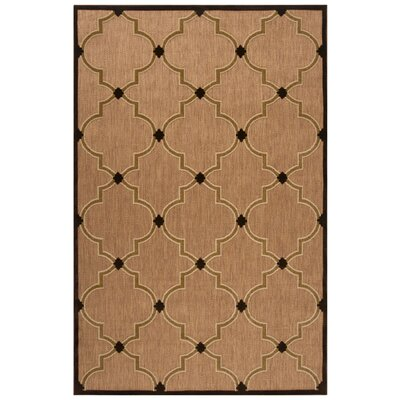 Carver Multi Indoor/Outdoor Area Rug Rug Size: 39 x 58