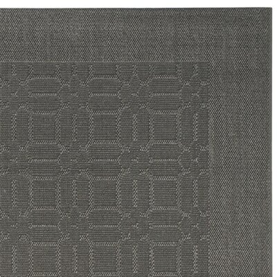 Nicoll Ash Area Rug Rug Size: Rectangle 8 x 10