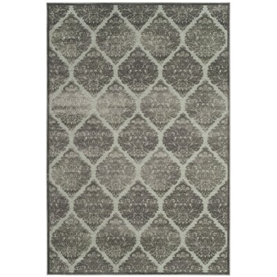 Orville Gray Area Rug Rug Size: Rectangle 27 x 4
