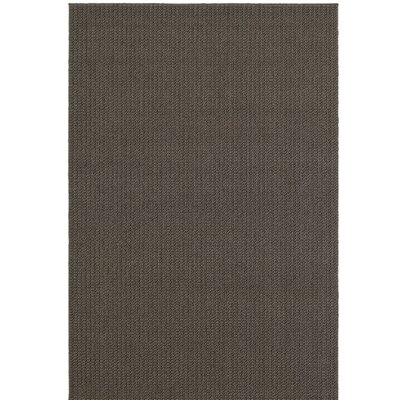 Carondelet Gray Outdoor Area Rug Rug Size: 33 x 411