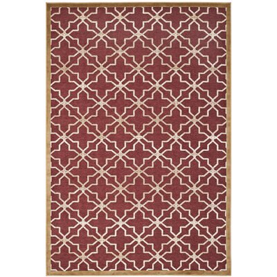 Star Gradient Red/Ivory Area Rug Rug Size: 53 x 76