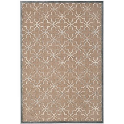Star Gradient Brown Area Rug Rug Size: 53 x 76