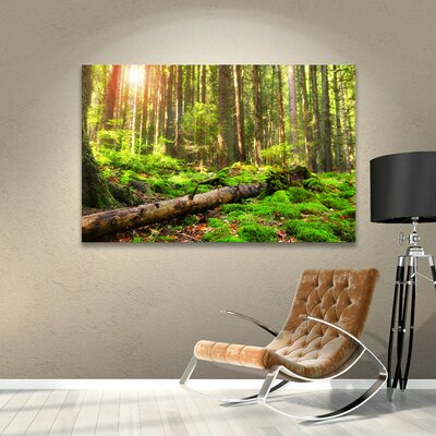 'Back to Green' Photographic Print on Wrapped Canvas Size: 12