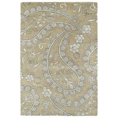 Newburgh Hand-Tufted Area Rug Rug Size: Rectangle 2 x 3