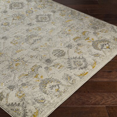 DeMastro Beige Area Rug Rug Size: Rectangle 22 x 3