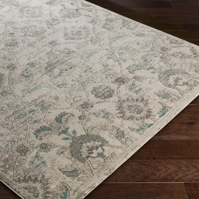 DeMastro Gray Area Rug Rug Size: Rectangle 52 x 76