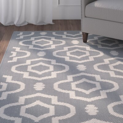 Alderman Anthracite/Beige Outdoor Area Rug Rug Size: Runner 23 x 10