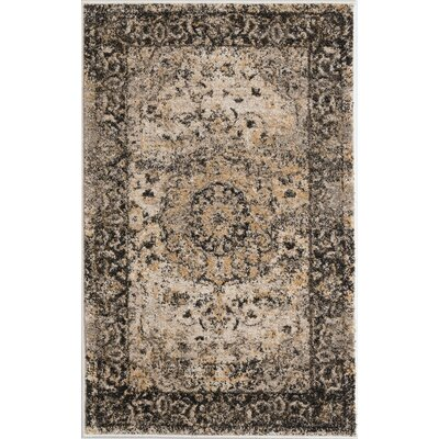 Russell Gray Area Rug Rug Size: 2 x 3