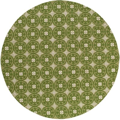 Oliver Hand-Hooked Grass�Indoor/Outdoor Area Rug Rug Size: 2 x 3