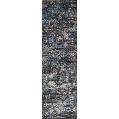 Hoagland Charcoal Area Rug Rug Size: Runner 23 x 76