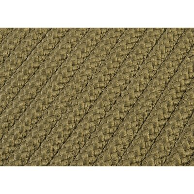 Glasgow Brown Indoor/Outdoor Area Rug Rug Size: Square 4