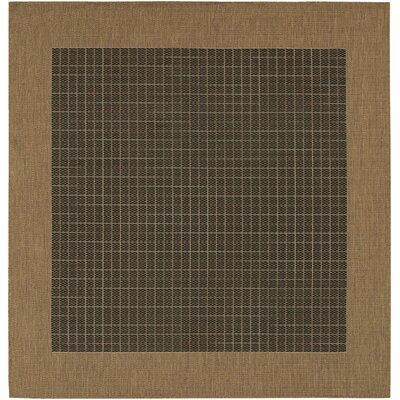 Ariadne Checkered Field Black/Cocoa Indoor/Outdoor Area Rug Rug Size: Square 76