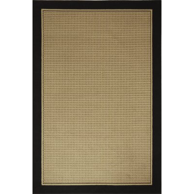 Cole Black/Brown Area Rug Rug Size: Rectangle 53 x 72