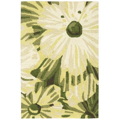 York Hand-Hooked Herb Area Rug Rug Size: Rectangle 19 x 29