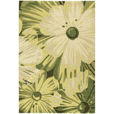 York Hand-Hooked Herb Area Rug Rug Size: Rectangle 36 x 56
