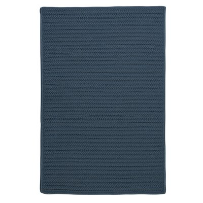 Glasgow Blue Indoor/Outdoor Area Rug Rug Size: 2 x 4