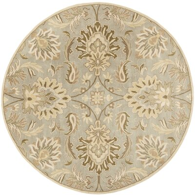 Camden Turtle Green Floral Area Rug Rug Size: Round 8