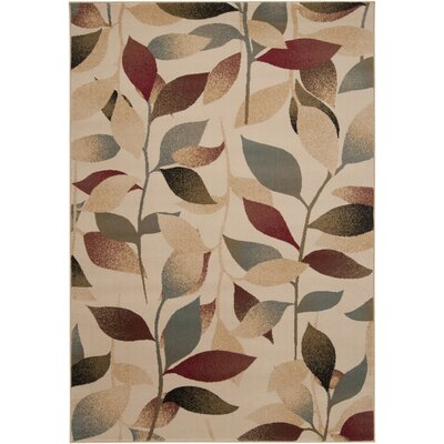 Yden Brown Area Rug Rug Size: 66 x 98