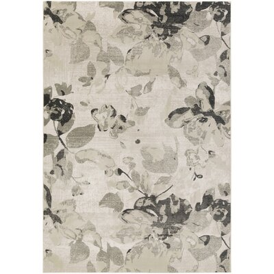 Cary Gray Area Rug Rug Size: Rectangle 22 x 3
