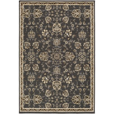 Dark Brown Area Rug Rug size: Rectangle 79 x 112