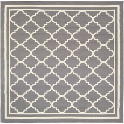 Osage Gray/Ivory Area Rug Rug Size: Square 710