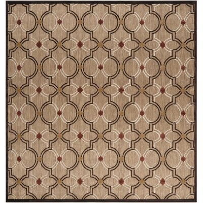 Carver Outdoor Rug Rug Size: Square 7'6