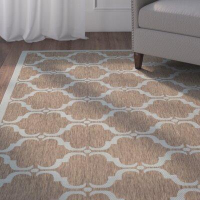 Octavius Brown/Aqua Indoor/Outdoor Area Rug Rug Size: Rectangle 8 x 11